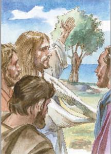XXVII - accresci in noi la fede